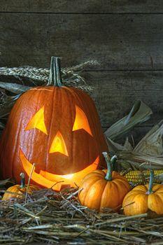 Carved jack-o-lantern lit for Halloween