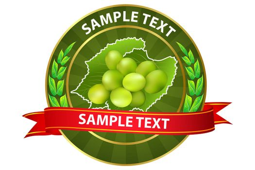 illustration of grapes tag on white background