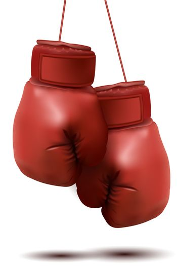 illustration of boxing gloves on white background