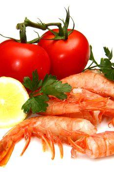 fresh shrimp with tomatoes