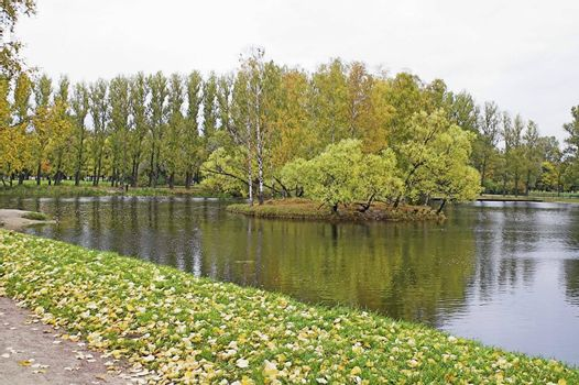 A lake in an autumn park with yellow leaves.