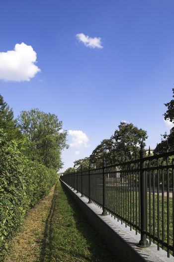Iron Fence in Summer Park