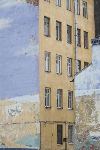 End Side Walls of Old Buildings and a Graffiti picturing flying birds.