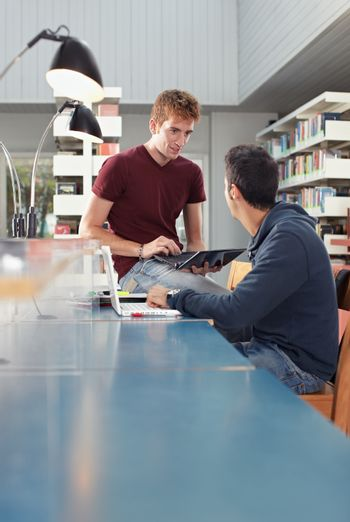two guys studying in library