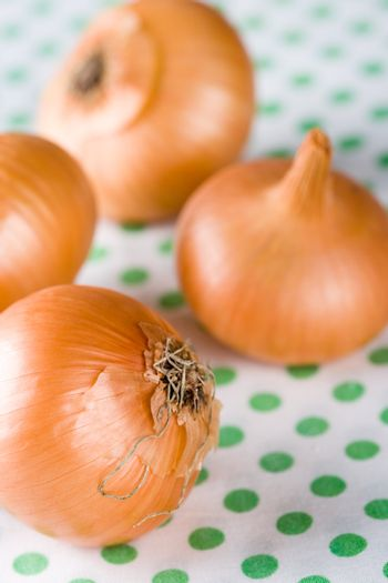 onions on textile background