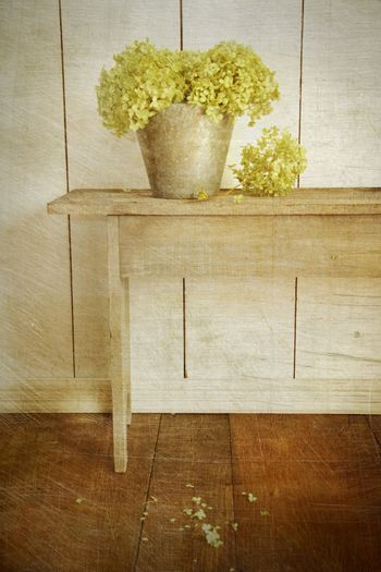 Hydrangea flowers with age vintage look