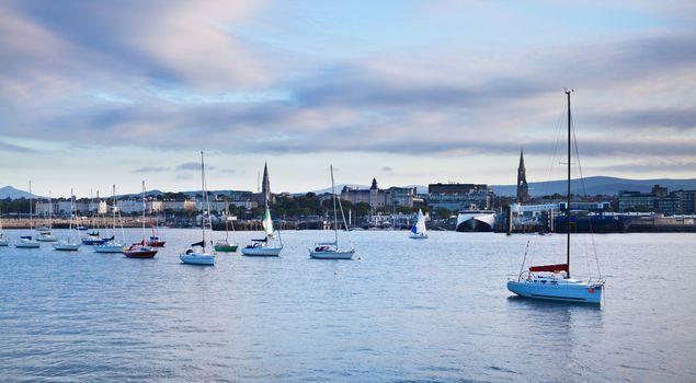 Anchored sailboats in a city harbor at sunset