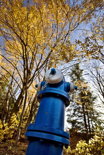 Fire Hydrant Blue