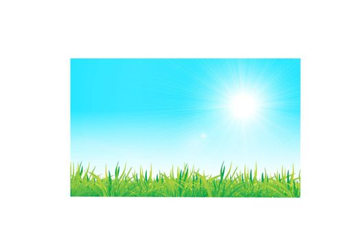 vector green grass and blue sky. Nature illustration