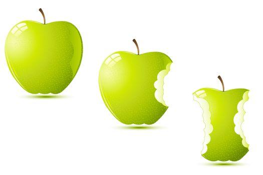 illustration of raw apples on white background
