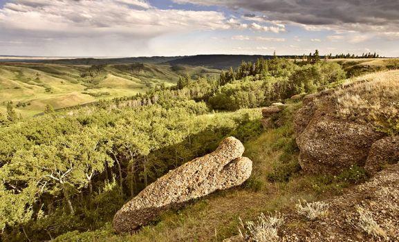 Cypress Hiils Canada