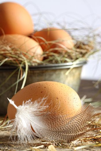 Closeup of brown eggs with straw