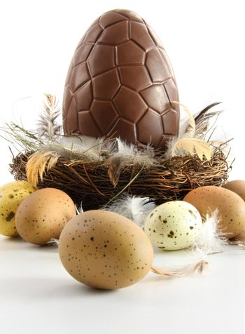 Big chocolate easter egg in nest with feathers
