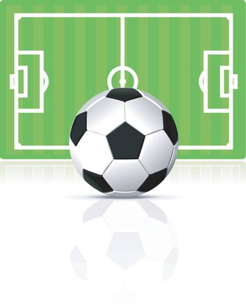 vector soccer ball with green field on white