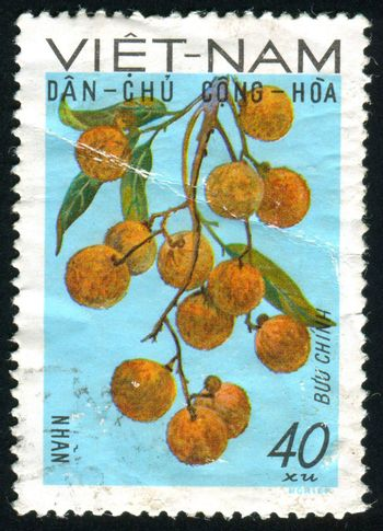 VIET NAM - CIRCA 1984: stamp printed by Viet Nam, shows flower, circa 1984
