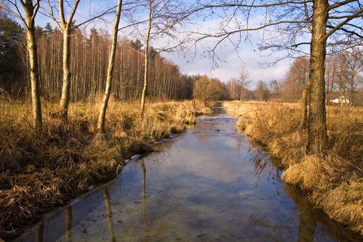 Stream in the village