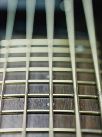detail of electric bass cords and frets
