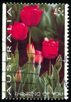 AUSTRALIA - CIRCA 1994: stamp printed by Australia, shows Tulips, circa 1994