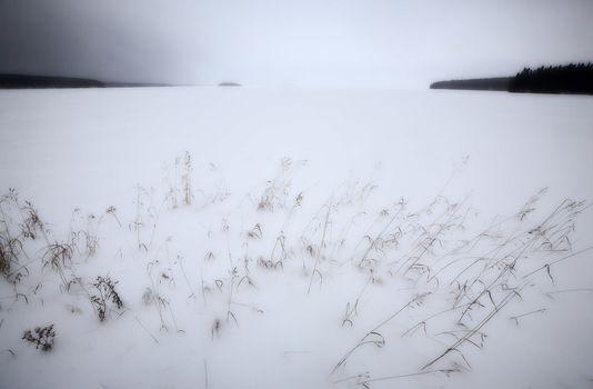 Snow Lanscape on Waskesui Lake in Winter Saskatchewan