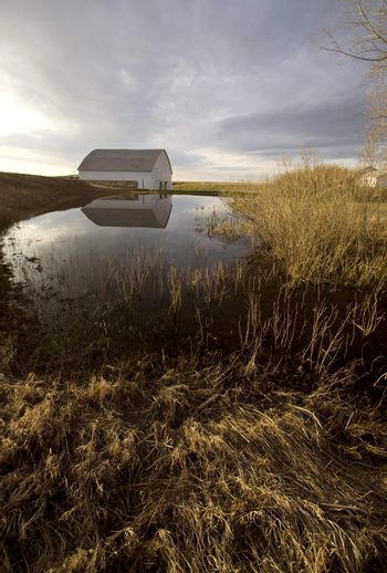 Old Barn and Dugout marsh Canada