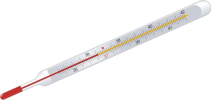 mercury thermometer on white