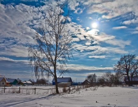 winter landscape, birch tree in village