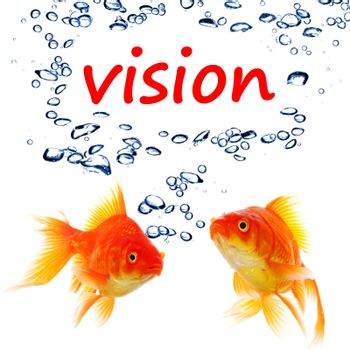 vision wird and goldfish showing business creativity or future telling concept