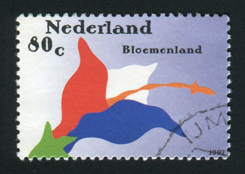 NETHERLANDS - CIRCA 1997:  Horticultural Education at Florens College Aalsmeer, circa 1997.
