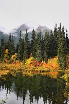 Reflections on a British Columbia lake