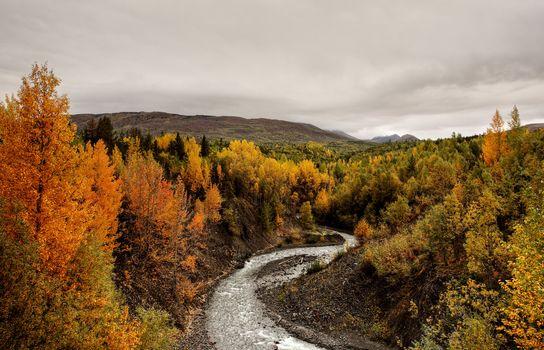 Creek in Northern British Columbia