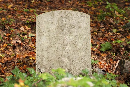 Single old grave