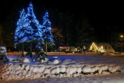 Christmas trees in public space