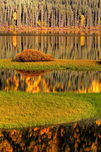Water reflections in autumn