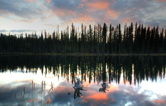 Reflections off pond in British Columbia