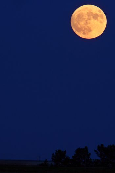 Full moon in spring