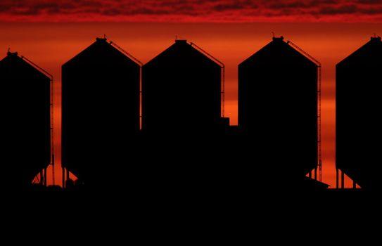 Set sun backlighting farm buildings