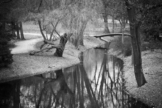 Pond in Warsaw park Lazienki