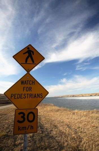 Pedestrian sign with snow geese behind