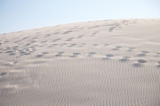 multiple footprints