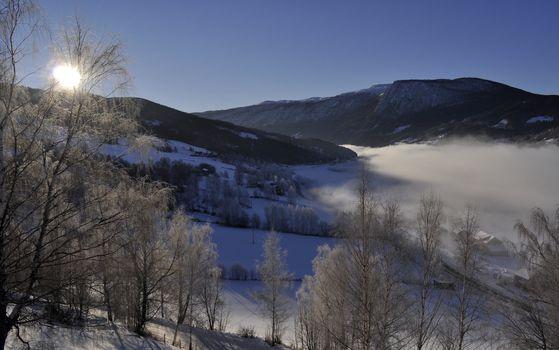 a winterlandscape in sunshine