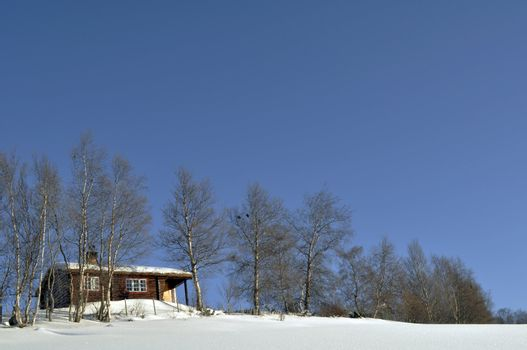 a cottage in a winterlandscape