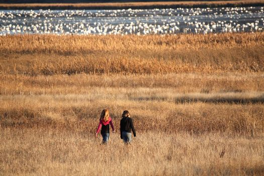 Two girls walking towards snow geese at Nicolle Flats