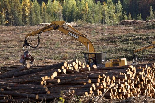 Logging machine piling logs in beautiful British Columbia