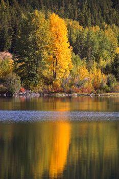 Autumn reflections in scenic Alberta