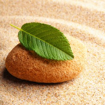 zen stone with leaf on sand showing spa concept