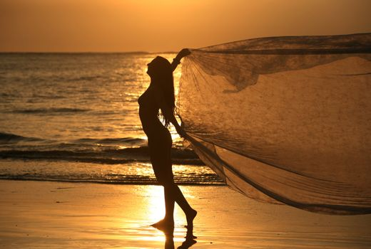 The beautiful woman on a coast on a sunset