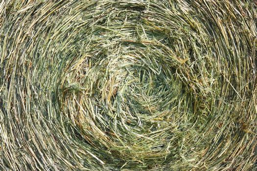 A close-up shot of a large bail of hay
