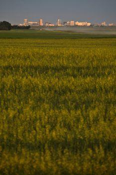 Regina in the distance in scenic Saskatchewan
