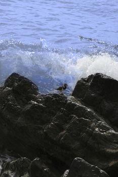 Rocks by the ocean