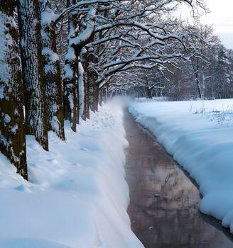 Winter park stream in snow